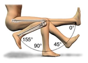 Degrees of Flexion and Extension at the Knee.